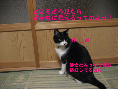 IMG_1716.jpg