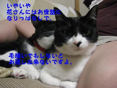 IMG_1751.jpg