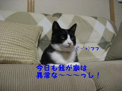 IMG_1794.jpg