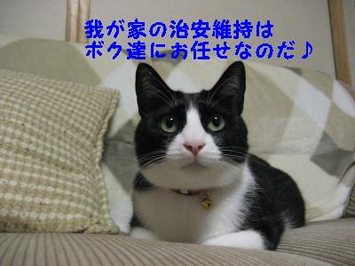 IMG_1812_20080912102330.jpg