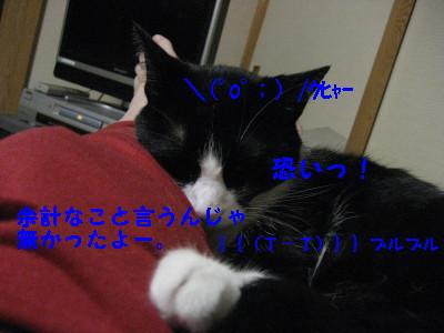 IMG_2148.jpg