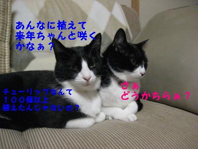 IMG_2327.jpg