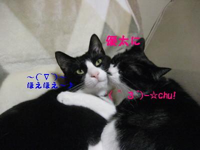 IMG_2390.jpg