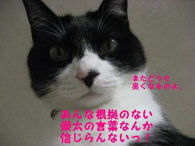 IMG_2627.jpg