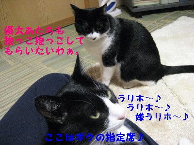 IMG_2658.jpg