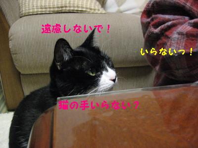 IMG_2871.jpg