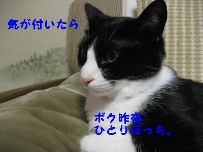 IMG_3125.jpg
