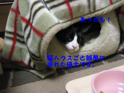 IMG_3237_20081117105711.jpg