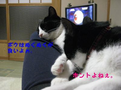 IMG_3304.jpg