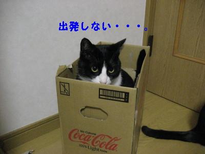 IMG_3565.jpg