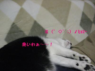 IMG_3673.jpg