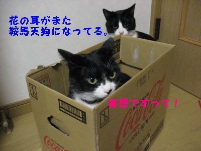 IMG_3899.jpg