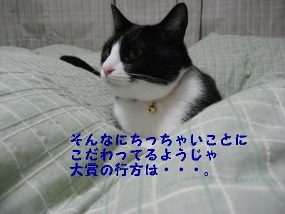 IMG_3951.jpg