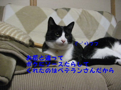 IMG_4209_20081217093611.jpg