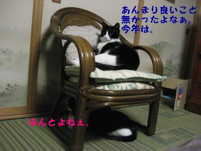 IMG_4473_20081226091643.jpg