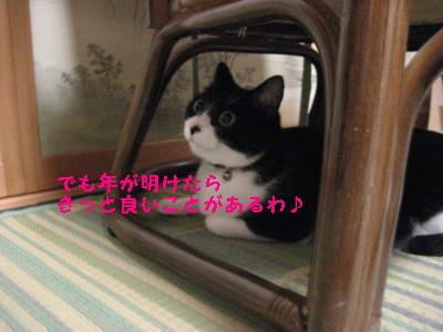 IMG_4474.jpg