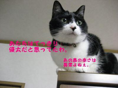 IMG_4579.jpg
