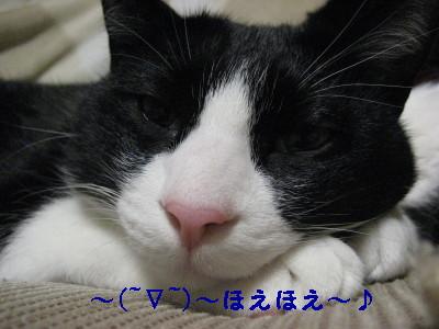 IMG_4846.jpg