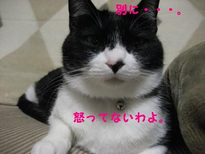 IMG_5124.jpg