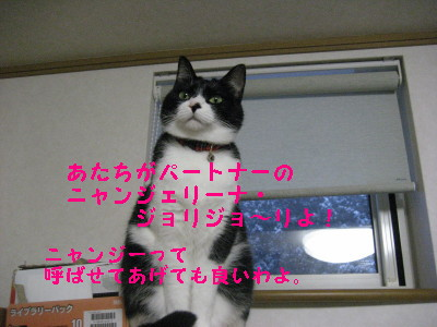 IMG_5307_20090129133512.jpg