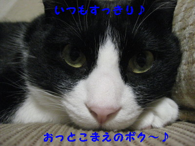 IMG_5465.jpg