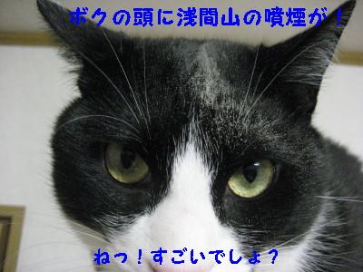 IMG_5495.jpg