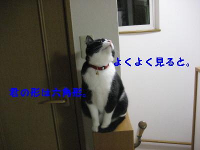 IMG_5650_20090213103943.jpg