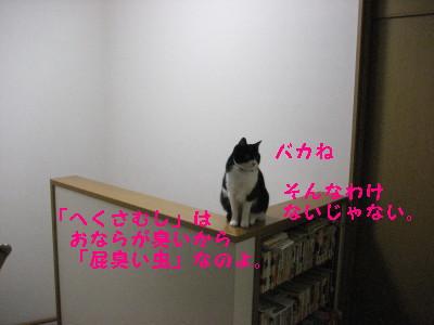IMG_5654_20090213103957.jpg