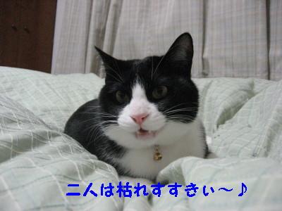 IMG_5988.jpg