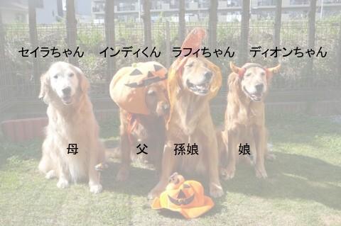 いんじくん一家3
