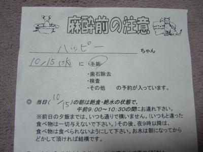 201014-01.jpg