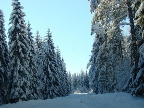 Narnia---