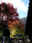 奈良田温泉の紅葉
