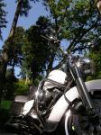 林間の青空とバイク