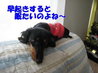 眠たい。。。