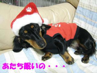 クリスマス・・・でも眠いの