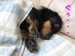 眠り姫チョコ