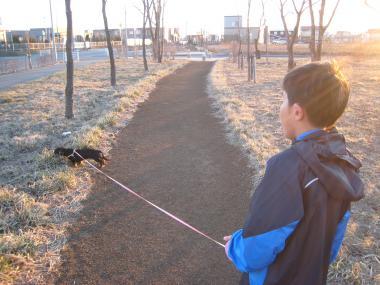 ぷっちぃとお散歩