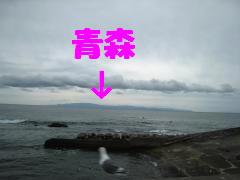 IMG_5291-2.jpg