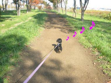 お散歩、お散歩♪