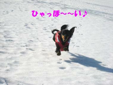 ひゃっほ~い♪跳んでるように走るよ!