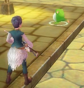 怪しいカエル