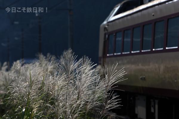 _MG_3915.jpg