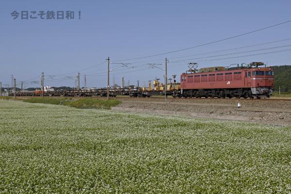 _MG_4050.jpg