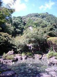 山荘テラスから見た池
