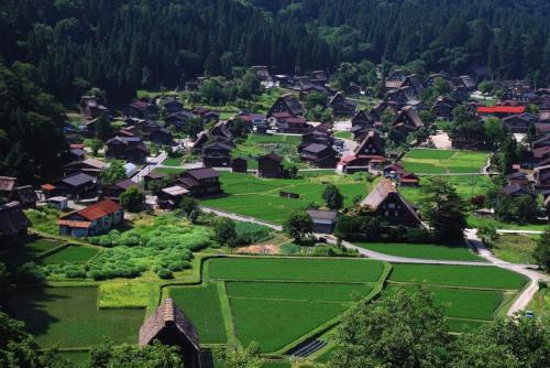 夏の荻町 全景