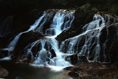 魚返りの滝2