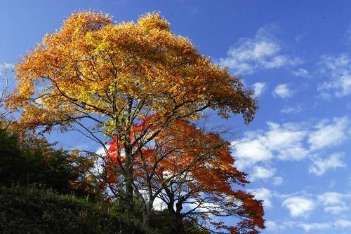 長野県上松町3