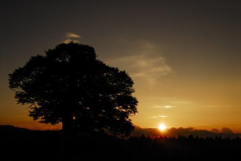 千町牧場の夕日