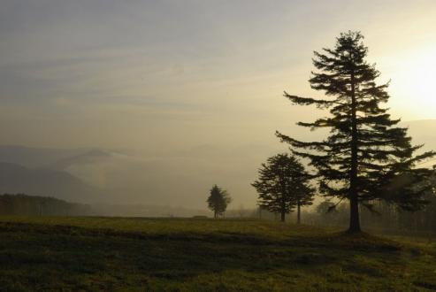 アルピコスキー場の朝